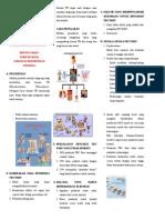 LeafletTBCPARU.doc