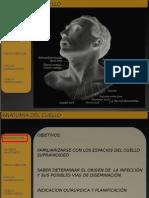 79258856 Presentacion Anatomia Del Cuello