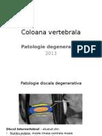 Coloana Vertebrala-Degenerativ, Hernie Disc
