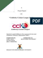 2013 Celebrity Cricket League
