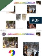 Palestra I MITE Indicadores de Contaminacao 2015