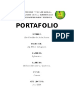 PORTAFOLIO 2DO INTERCICLO