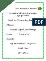 CHALCO ADRIANA MVZ.1.pdf