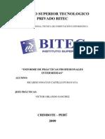 Practicas Profesionales Finales - Ricardo Castillo Pumayaya