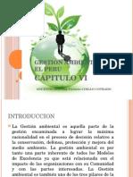 CAP.IV GESTION AMBIENTAL.pptx