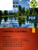 Control Cultural Diapositivas