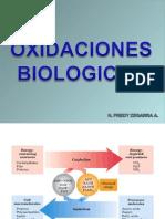 OXIDACIONES_BIOLOGICAS