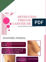 CANCER DE MAMA expo.pptx