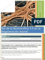 Neurotrofina 4-5 Final