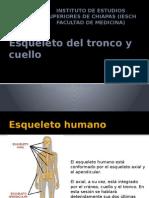 columna vertebral y torax.pptx