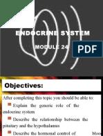 Endocrine System Module Ch.24