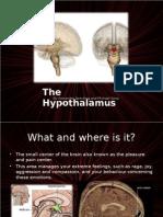 Hypothalamuspsychpresentation Alexsmichael 110411152602 Phpapp02