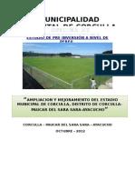Perfil de Proyecto estadio Corculla