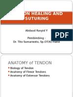 tendon Healing and Suturing