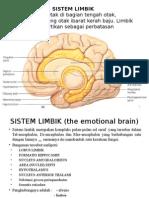 Anatomi Sistem Limbik