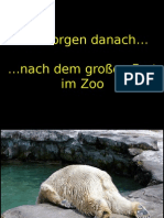 Der Morgen Nach Der Party Im Zoo1
