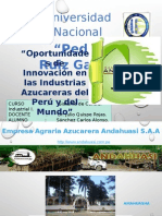 Industria Azucarera FINAL