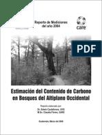 Informe de Carbono I 2004