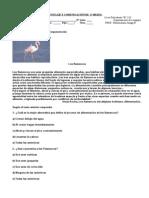 Prueba de Lenguaje y Comunicación de 3º Medio