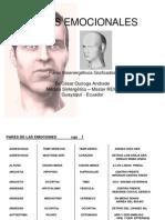 63 pares Biomagneticos Emocionales con graficos