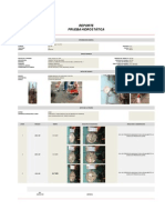 Informe Modelo Prueba Hidrostatica