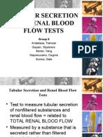 Tubular Secretion and Renal Blood Flow Tests - Grp. 6