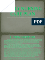 Family Nursing Care Plan
