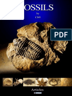 CMI - Fossils
