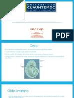 Embriologia Oído y Ojo