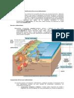 Procesos Sedimentarios y Clasificación de Las Rocas Sedimentarias