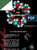 LA CÉLULA Biomoléculas