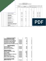 Plan Anual-tesoreria 2009
