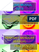Modul Pms Minor Dr Holy 2015