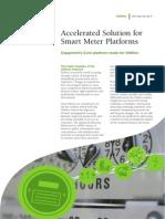Accelerated Solution for Smart Meter Platforms
