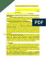 Demanda C.A. Reintegro del Subsidio de Luto y Gastos de Sepelio.docx