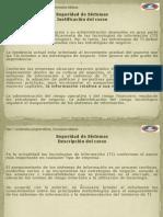 SeguridadDeSistemas -D+¡a01