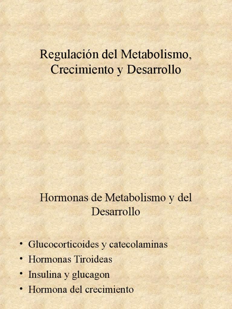 Metabolismo basal  La historia