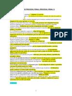 PREGUNTERO PROC PENAL ale.pdf