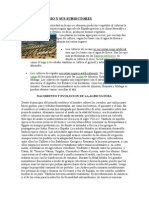 Andalucía Sectores Economicos