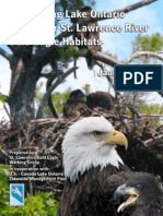 Conserving Lake Ontario & Upper St. Lawrence River Bald Eagle Habitats