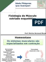 Aula - Músculo Esquelético e Junção (Psicologia)