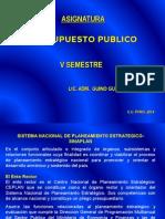 presupuesto PUNO.ppt