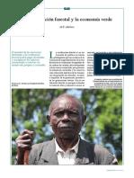 La certificación forestal y la economía verde