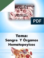 Sangre y Organos Hematopericos