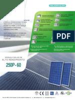 panel 250w sunnergy