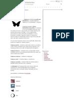 Significado de Mariposa - Dicionário de Símbolos