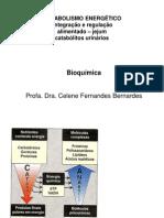 Aula 11 Integracao Metabolismo Energetico (1)