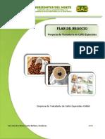 PLAN de NEGOCIOS Tostaduria Cafes Colibri