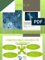 EL COMIENZO DE LA GENETICA.ppt