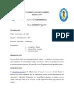 Plan de Demostracion de e.p. Tactil..Durante_el_ebarazo